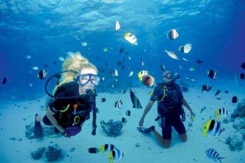 CG.A_Diving-Bora_D8X_4257-low